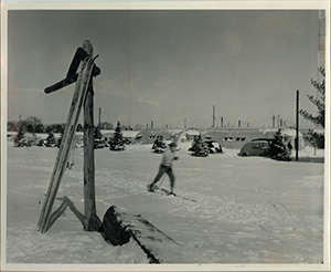Snow Scene with Cross Country Skier